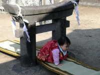 粟島神社大祭