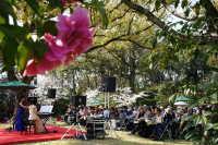 耳納北麓草野つばき祭り