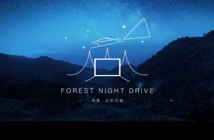 Forest Night Drive Itoshima